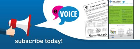 Receive The Voice via Email